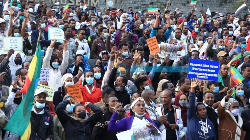 Ethiopians Rally to Demand Int'l Community Stop Supporting Terrorist TPLF